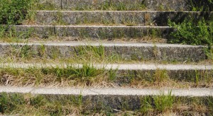 Unkraut auf Treppe