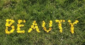 Rasen kalken und düngen