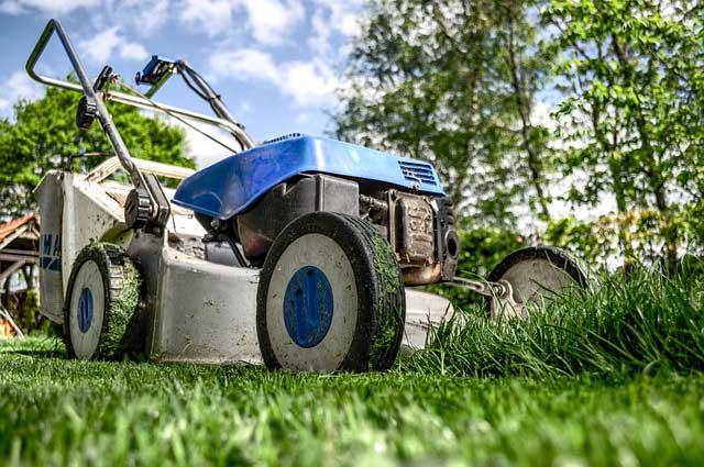 Wann und wie Rasen mähen – Tipps zum Rasenmähen